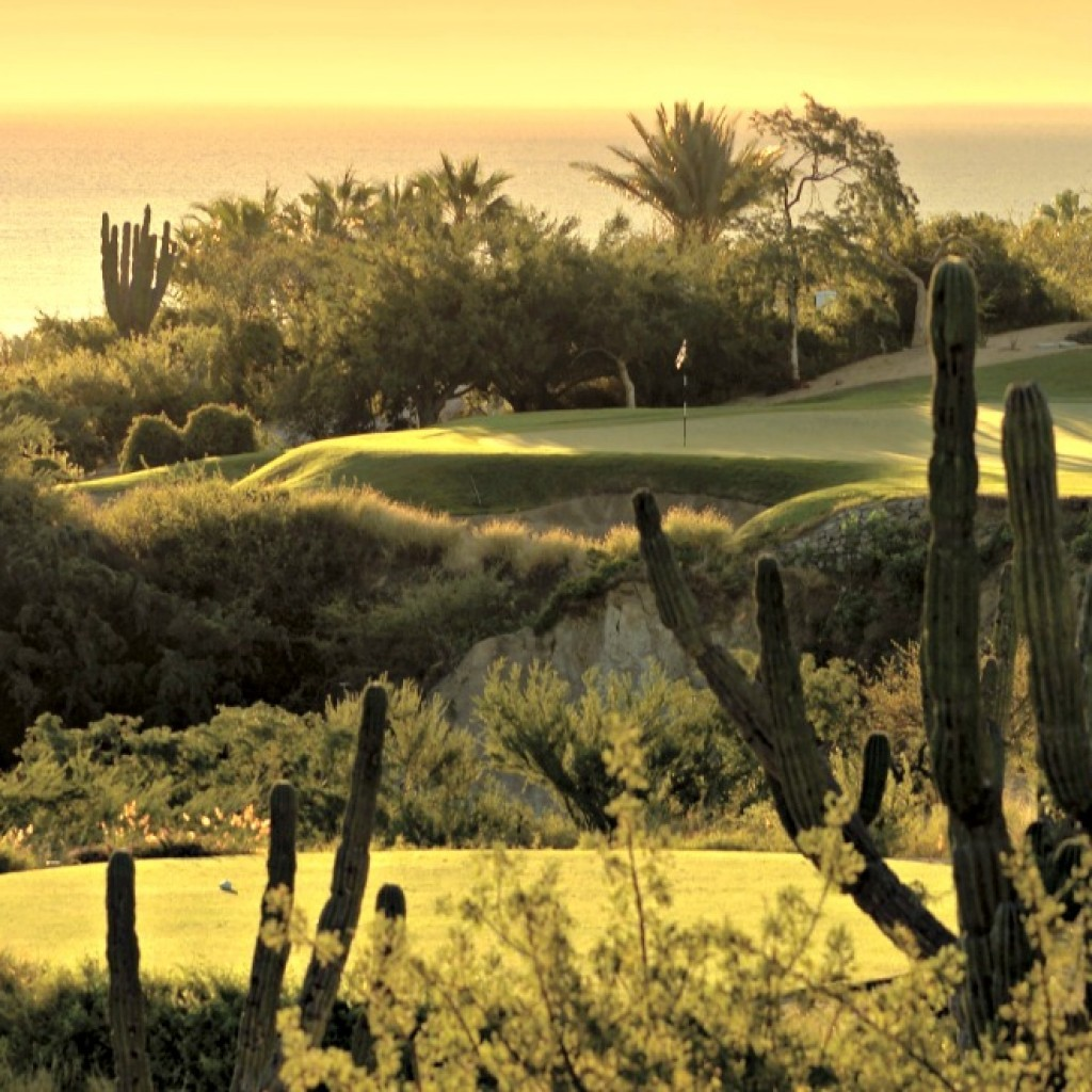 The cities of Los Cabos offer world class golf courses for the golfing enthusiast.