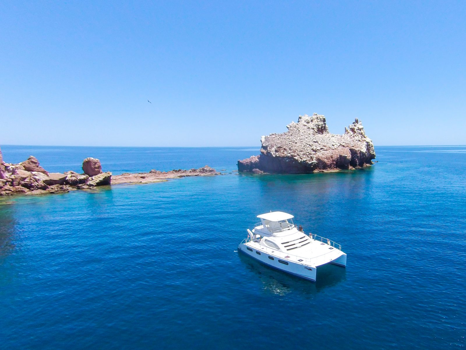 Sea of Cortes - Cabo Adventures